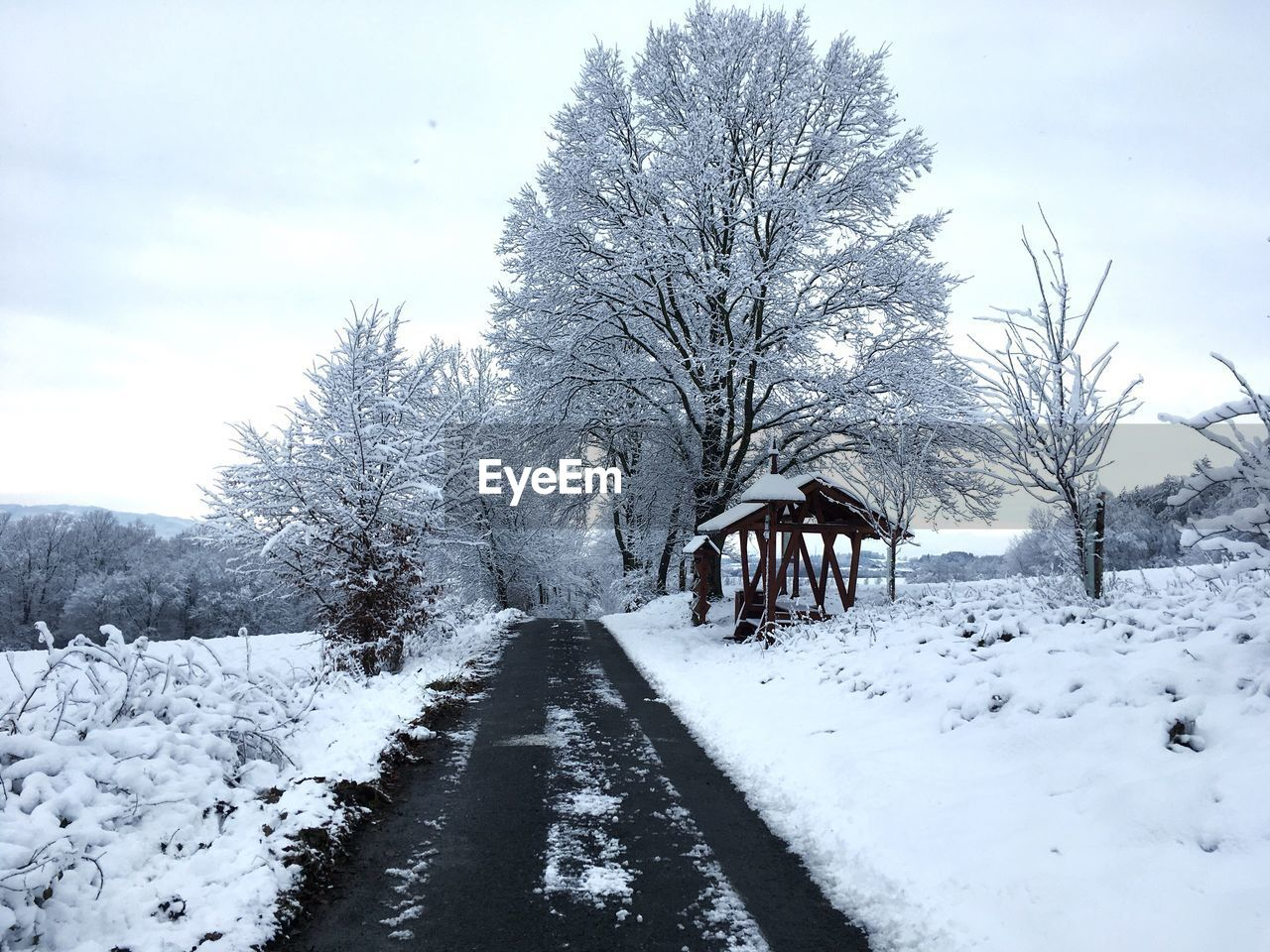 snow, cold temperature, winter, tree, sky, plant, beauty in nature, nature, covering, white color, scenics - nature, day, direction, tranquility, the way forward, tranquil scene, no people, land, bare tree, outdoors