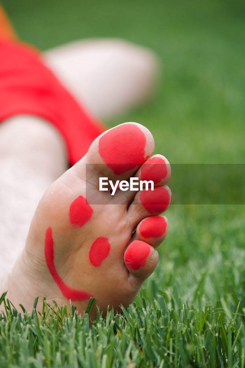 one person, plant, grass, human body part, body part, red, field, nail polish, nature, women, close-up, real people, land, human hand, green color, barefoot, nail, selective focus, leisure activity, hand, human foot, outdoors, finger, toenail, human limb