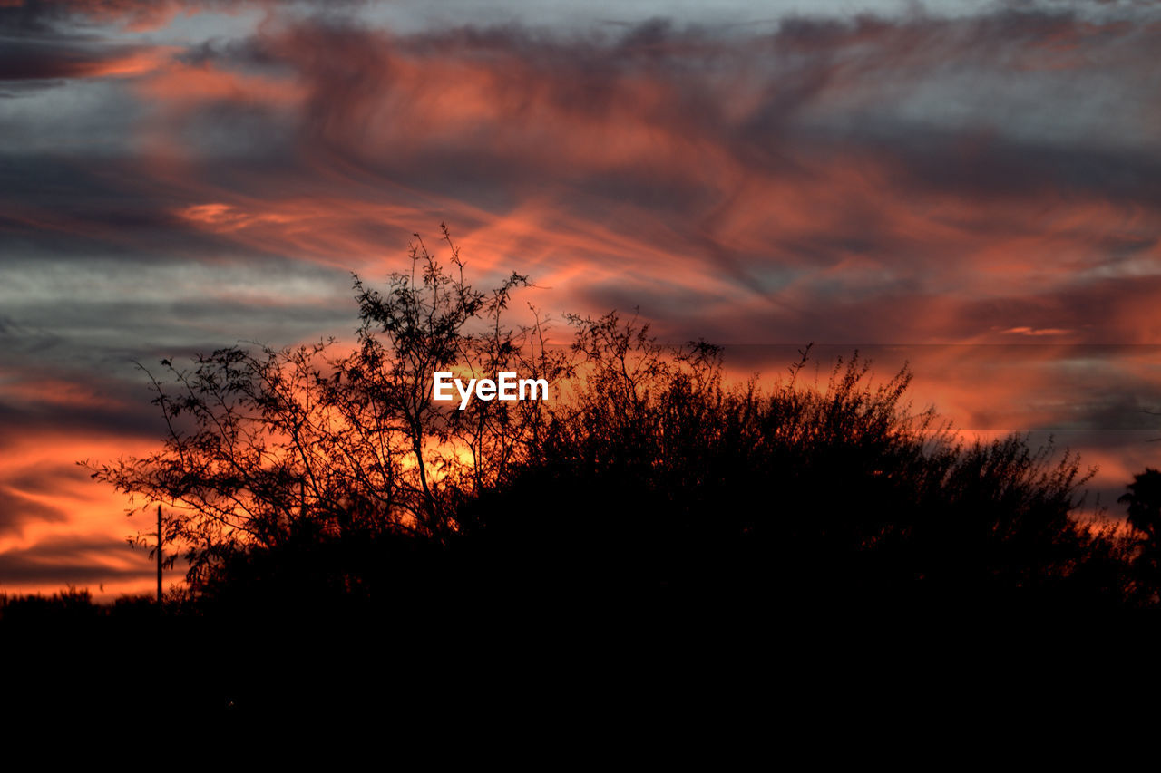 sunset, silhouette, orange color, sky, beauty in nature, nature, tree, tranquil scene, scenics, tranquility, cloud - sky, dramatic sky, no people, outdoors, landscape, plant, growth, day