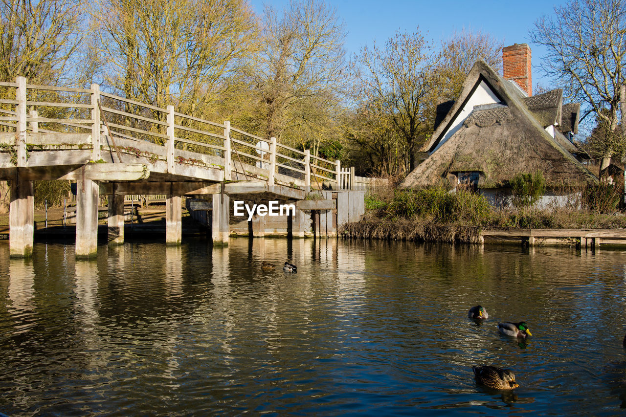 water, built structure, architecture, tree, building exterior, no people, animal, animal themes, animal wildlife, animals in the wild, nature, lake, waterfront, sky, day, plant, bridge, bird, group of animals, bridge - man made structure, duck, outdoors