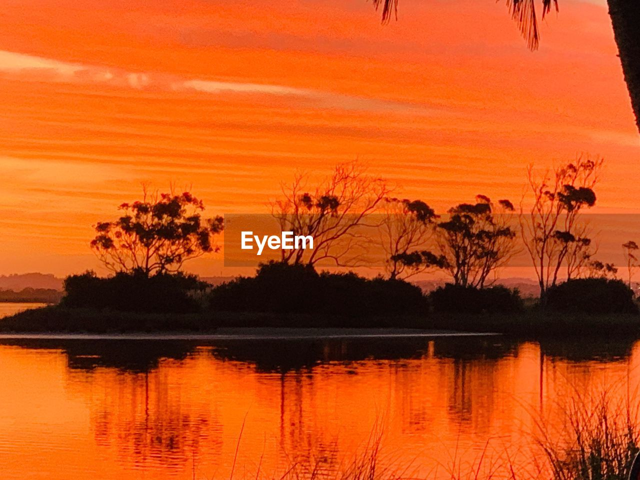 sunset, orange color, beauty in nature, scenics - nature, tree, sky, plant, tranquility, reflection, silhouette, water, lake, tranquil scene, no people, nature, idyllic, non-urban scene, waterfront, outdoors, romantic sky