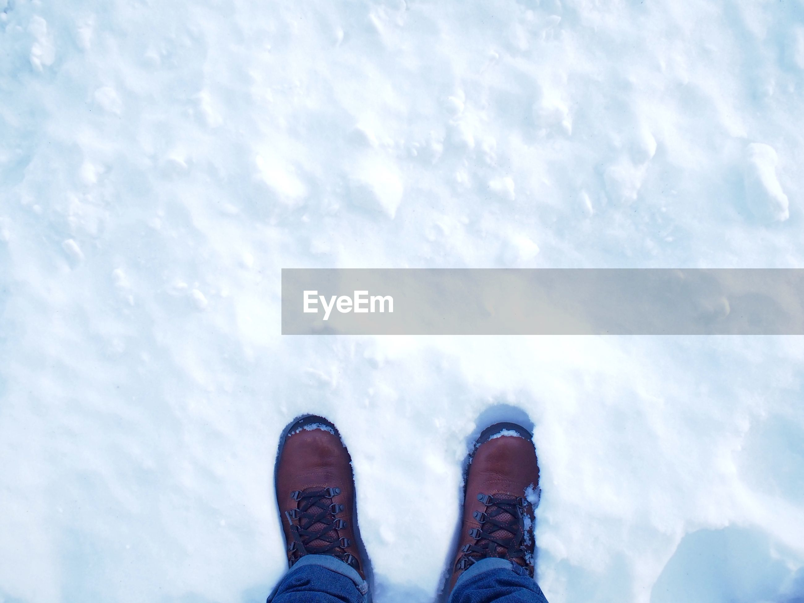 Low section of human legs on snow
