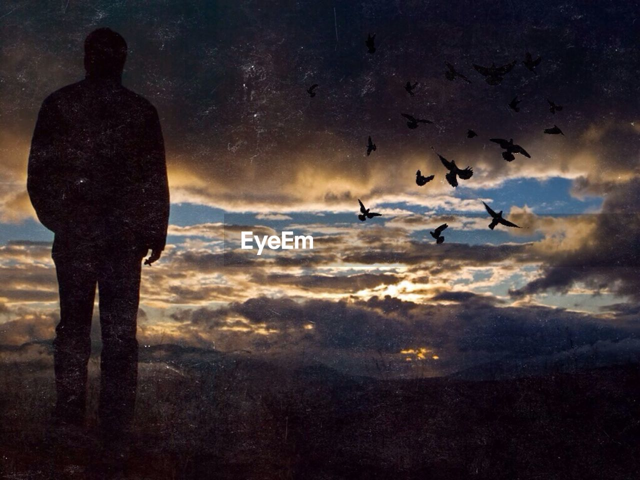 silhouette, sunset, nature, sky, animal themes, cloud - sky, flying, scenics, beauty in nature, bird, outdoors, animals in the wild, one person, full length, one man only, day, only men, people