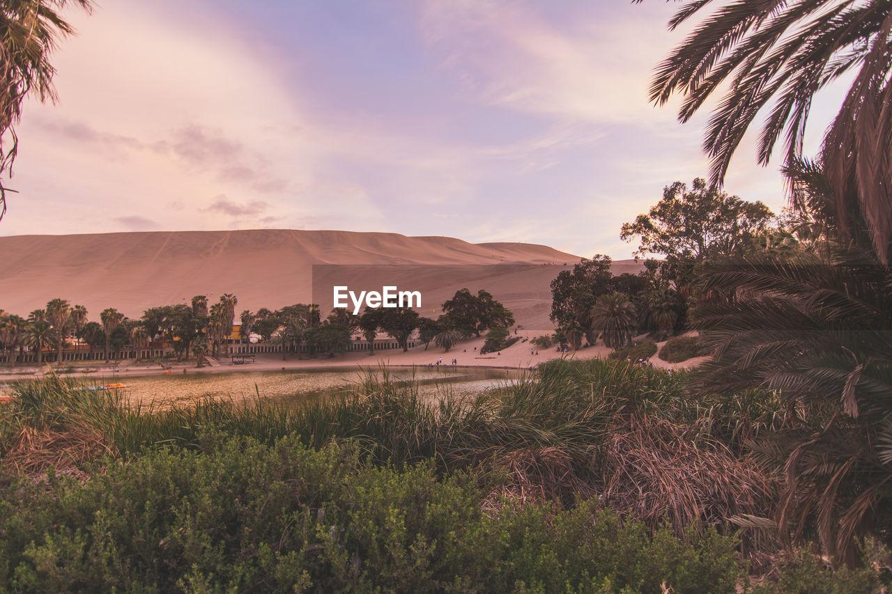 Semi Arid Desert With Lagoon