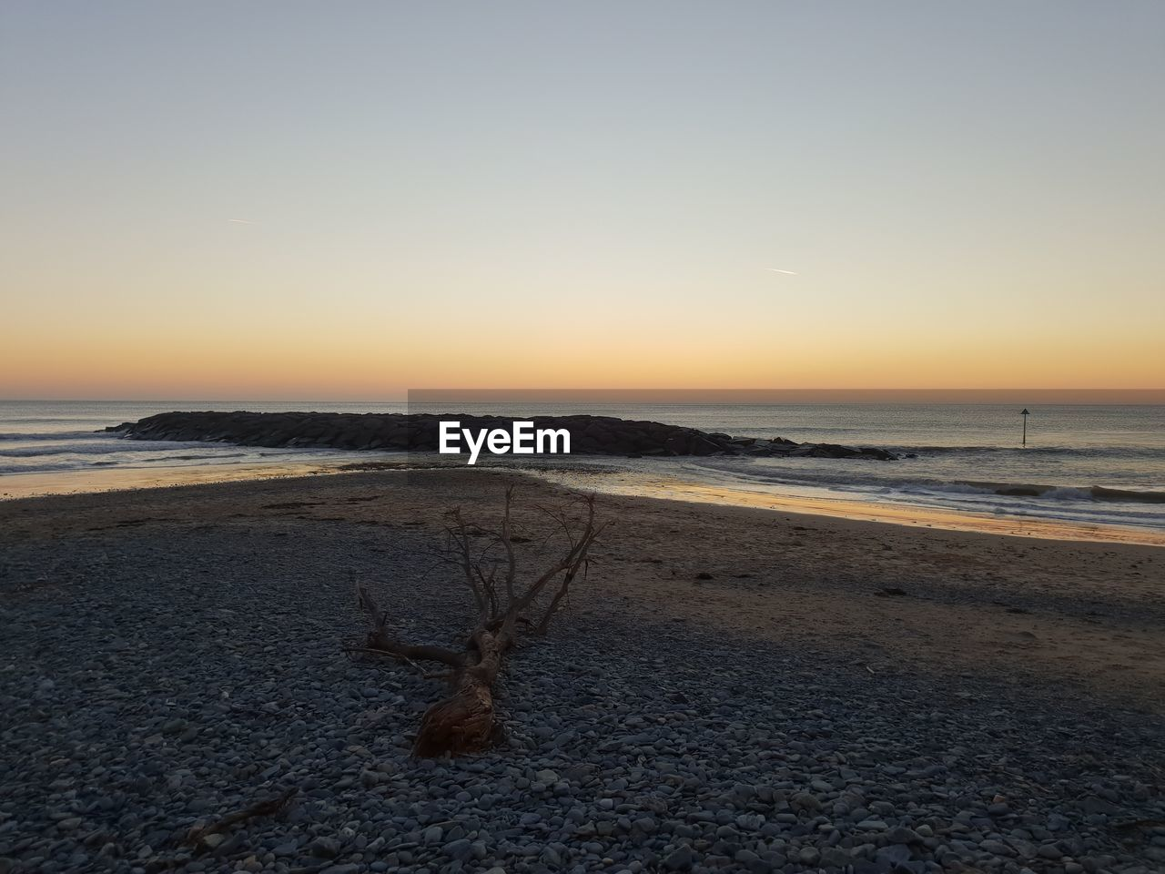 sky, sea, water, beach, scenics - nature, land, sunset, beauty in nature, tranquility, tranquil scene, nature, horizon, sand, horizon over water, copy space, no people, non-urban scene, clear sky, orange color, outdoors, driftwood