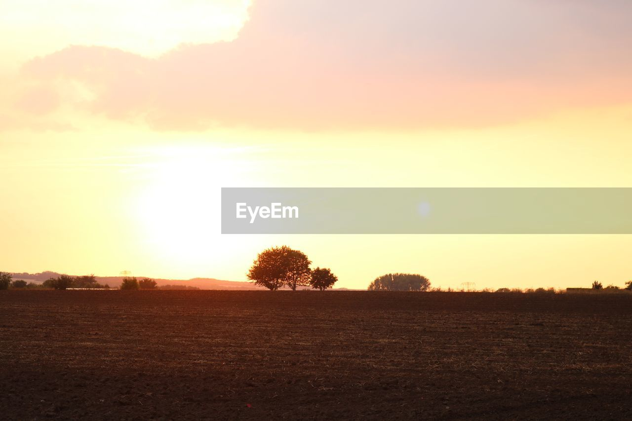 sky, tranquil scene, scenics - nature, landscape, sunset, tranquility, field, land, environment, beauty in nature, sun, nature, agriculture, plant, rural scene, no people, tree, sunlight, farm, cloud - sky, outdoors