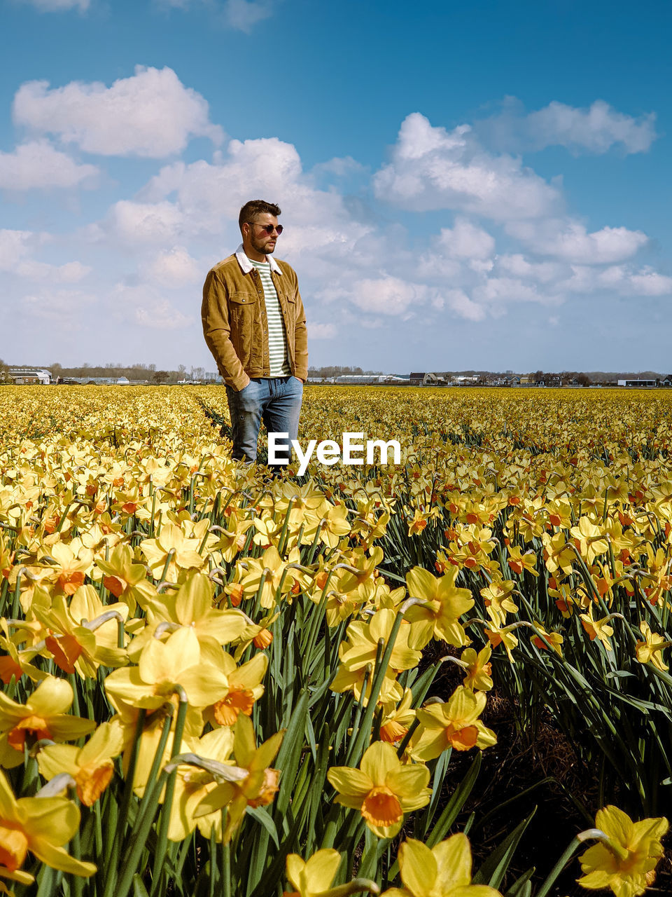Full length of man standing on field ow yellow flowers