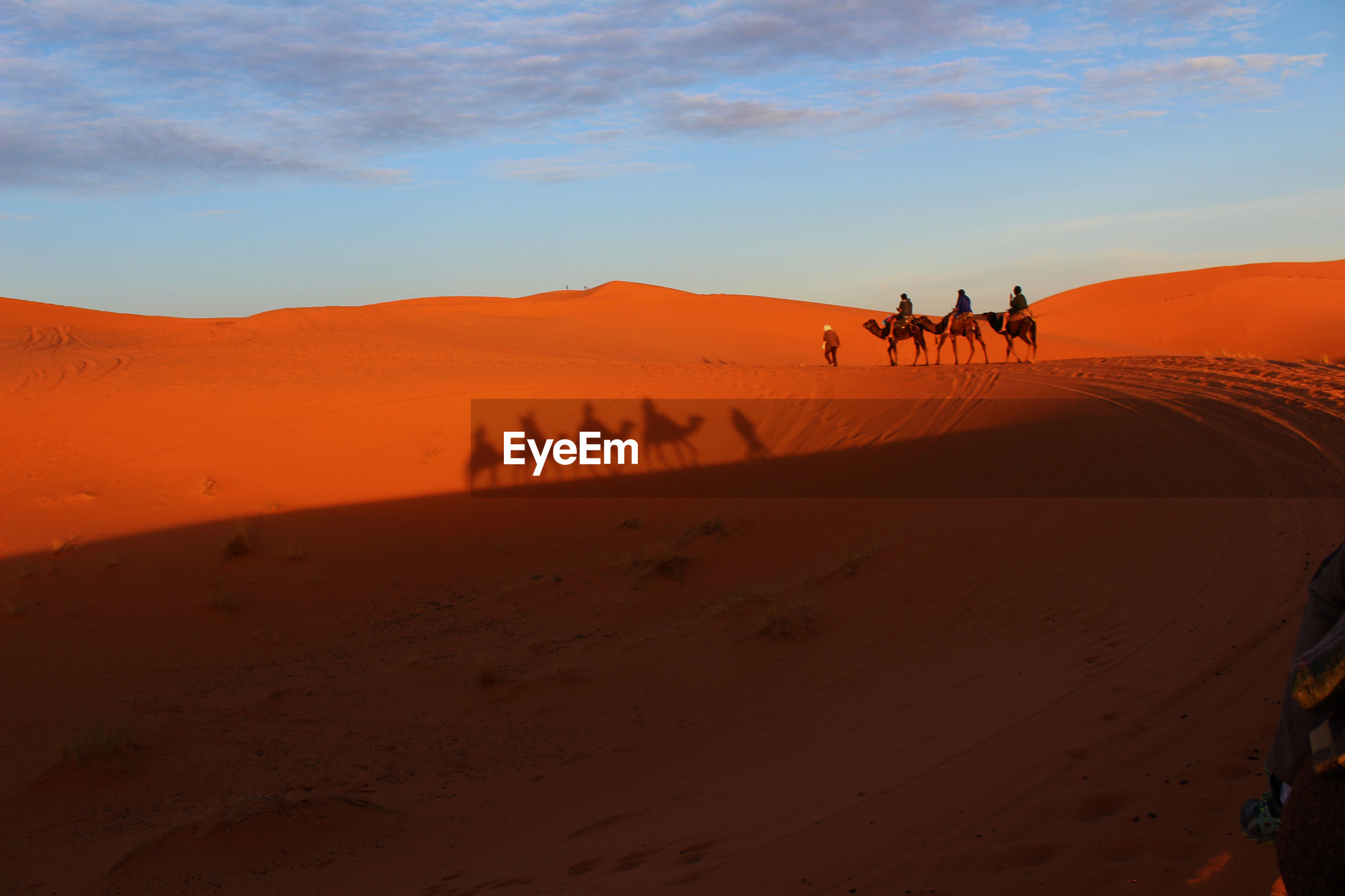 VIEW OF PEOPLE RIDING IN DESERT