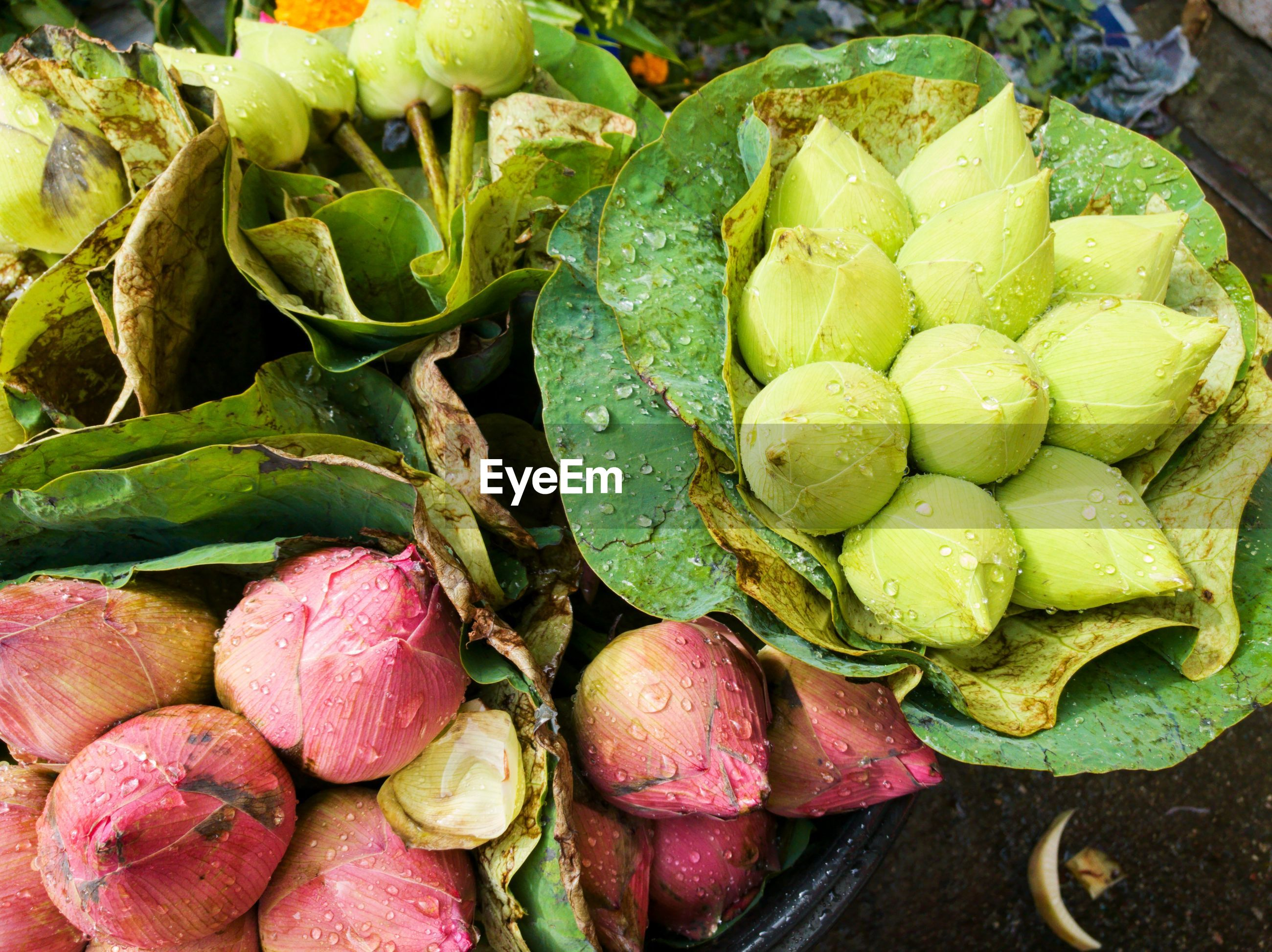 High angle view of vegetables for sale in market