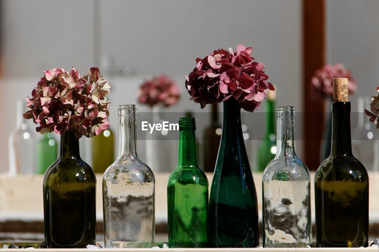 container, flower, bottle, flowering plant, glass - material, plant, fragility, vulnerability, indoors, wine bottle, transparent, no people, freshness, table, still life, close-up, focus on foreground, nature, refreshment, drink, flower head, glass, flower arrangement