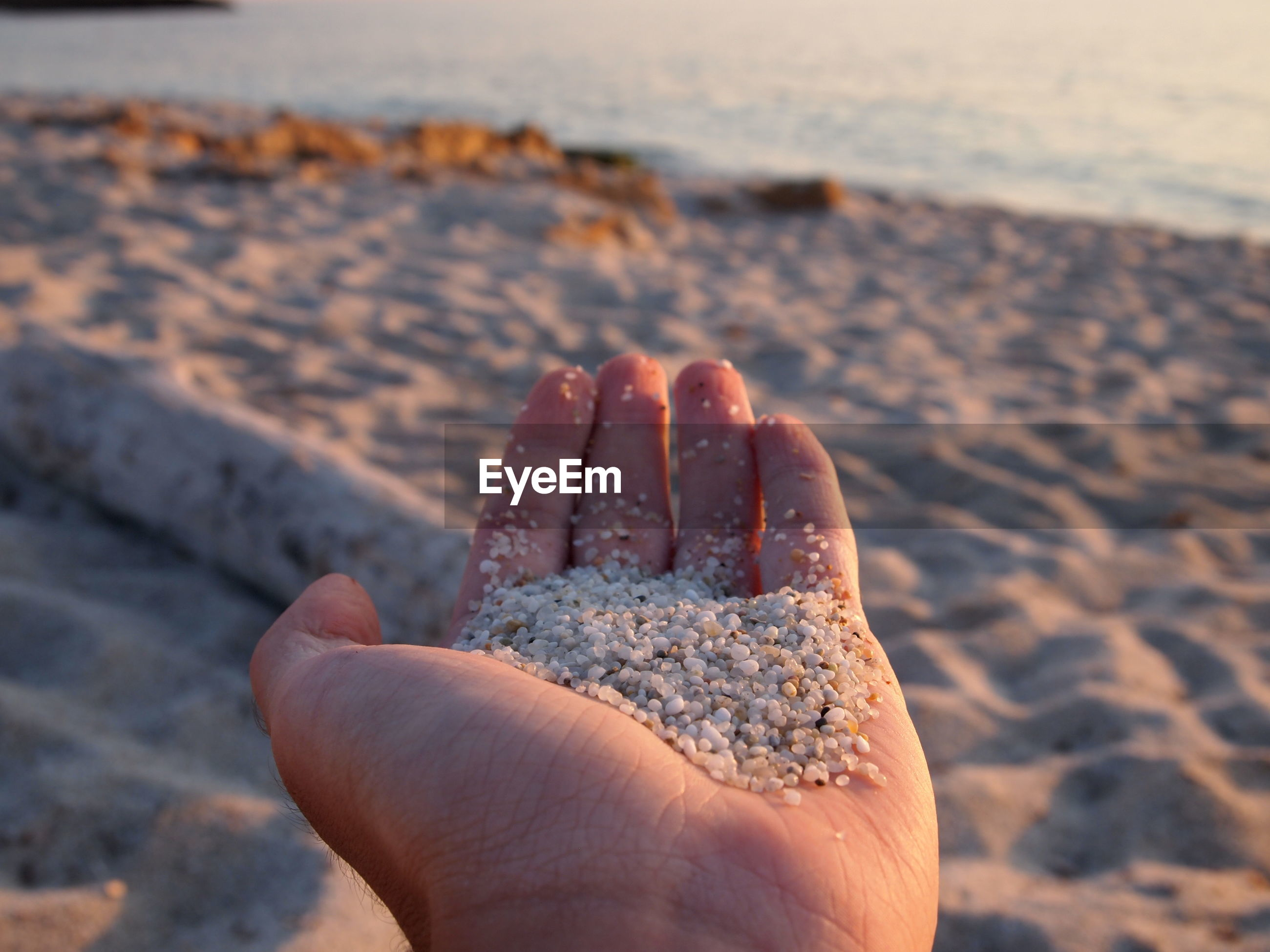 Cropped image of hand holding sand at beach