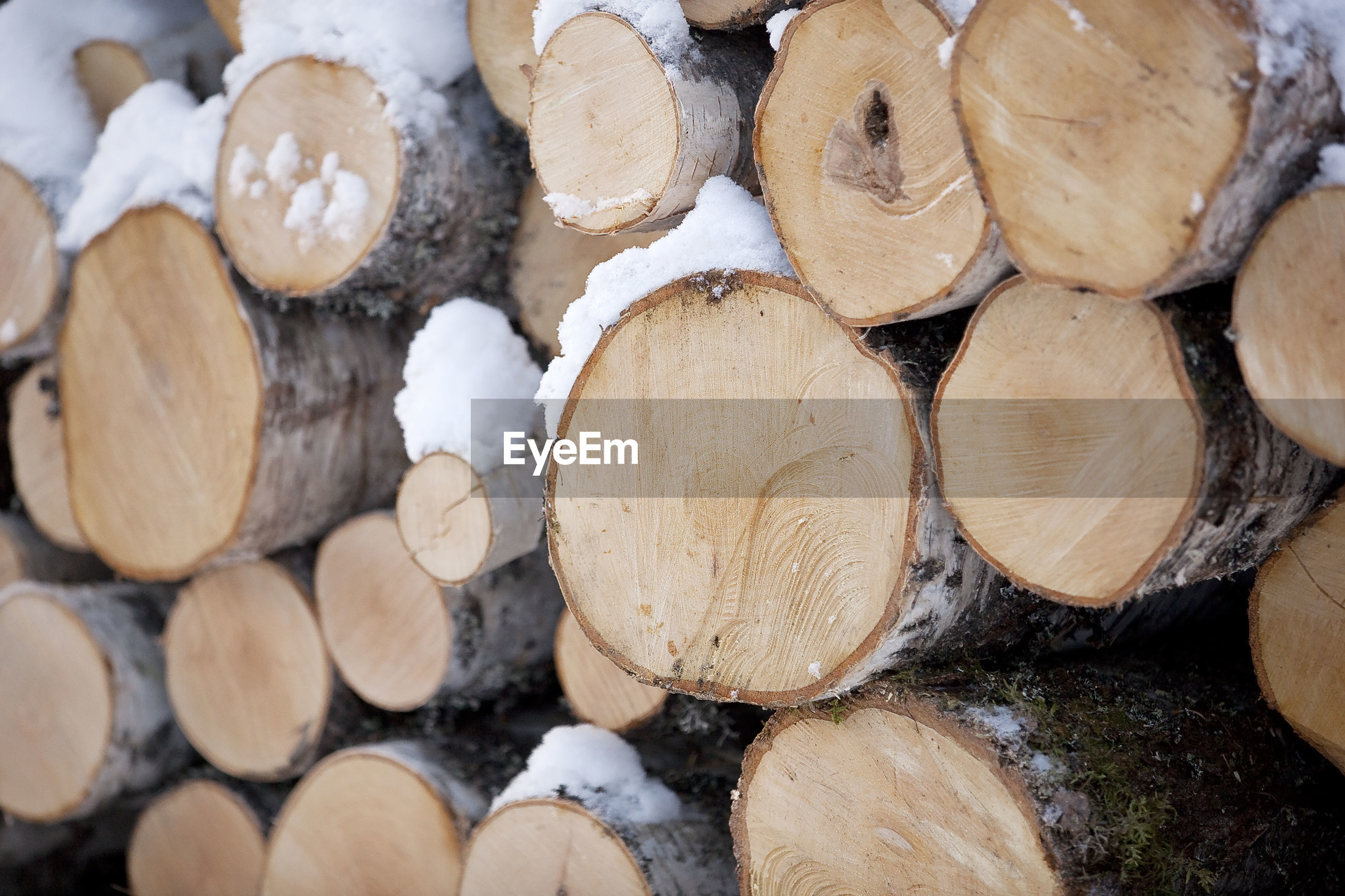 FULL FRAME SHOT OF LOGS AND FIREWOOD