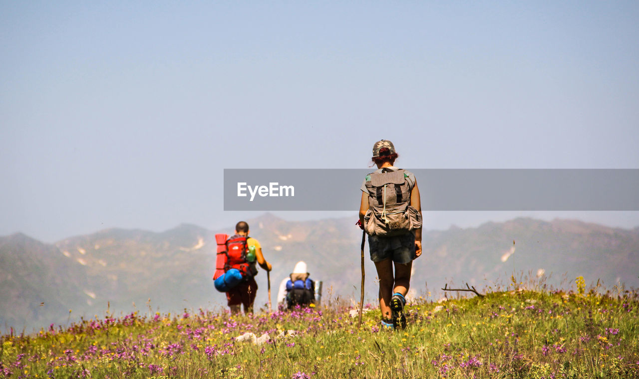 Rear View Of Hikers Walking On Grassy Hill Against Clear Sky
