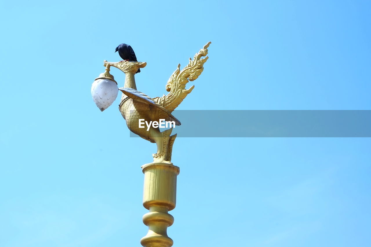 copy space, clear sky, low angle view, blue, day, no people, outdoors, animals in the wild, nature, bird, close-up, animal themes, sky
