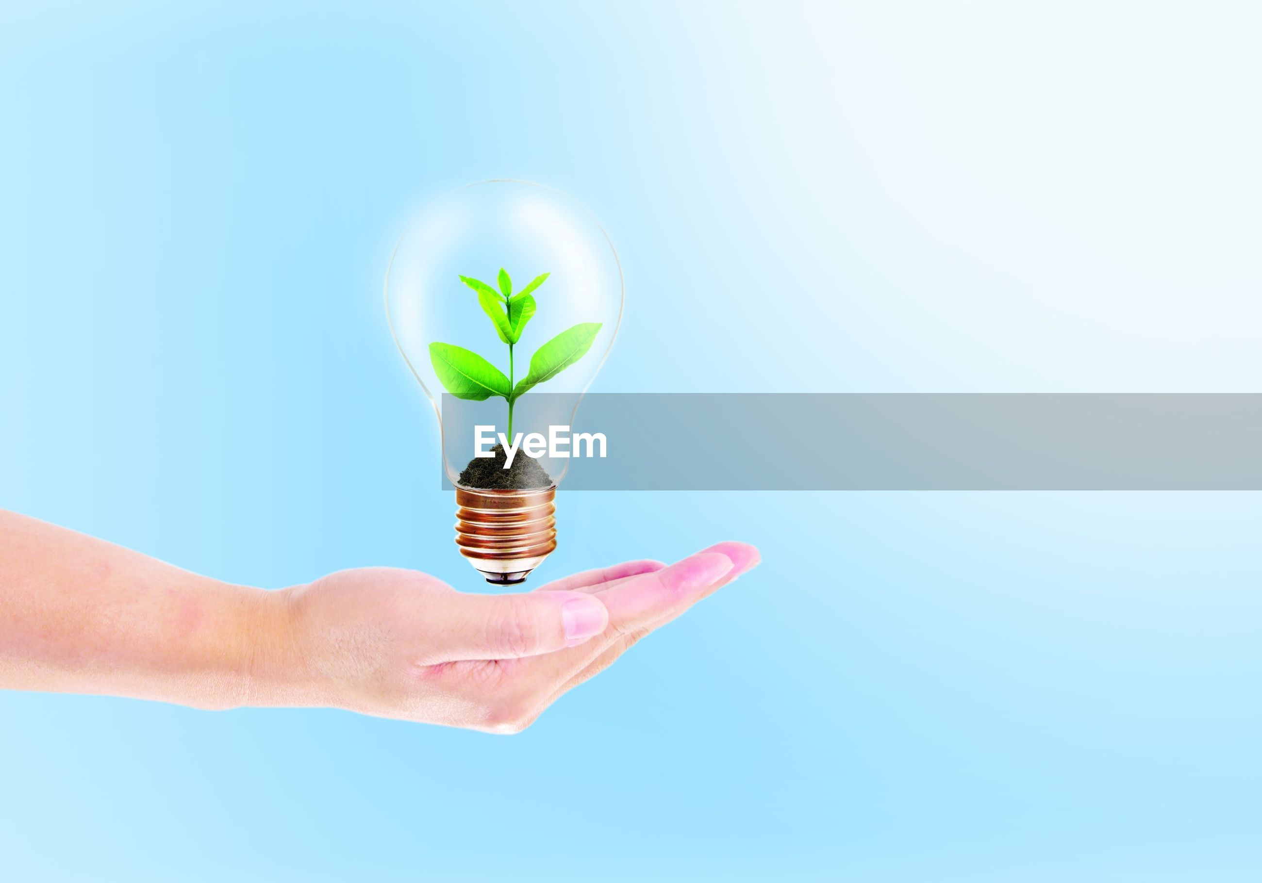 Digital composite image of hand levitating bulb with plant against blue background