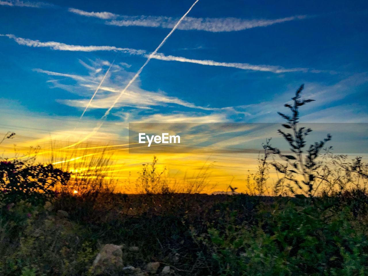 sky, cloud - sky, beauty in nature, tranquil scene, tranquility, scenics - nature, environment, vapor trail, landscape, plant, sunset, no people, nature, non-urban scene, blue, idyllic, field, land, silhouette, orange color, outdoors