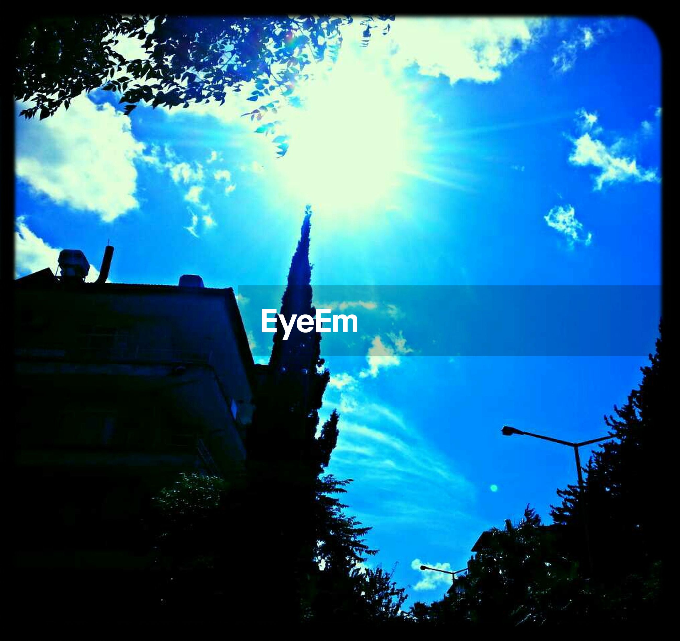 low angle view, sky, transfer print, tree, blue, sun, sunbeam, sunlight, silhouette, auto post production filter, cloud - sky, building exterior, cloud, built structure, lens flare, architecture, nature, beauty in nature, high section, day