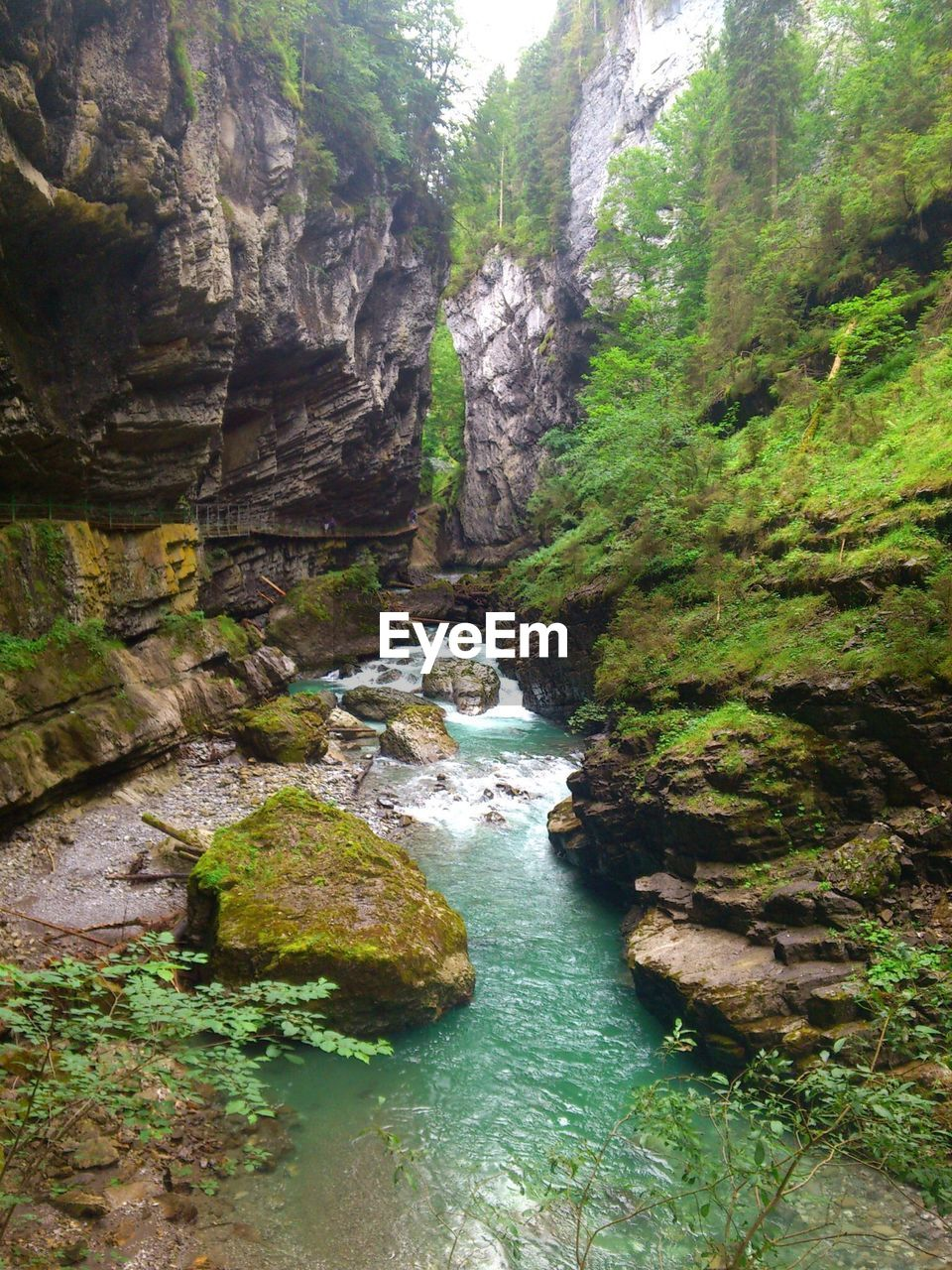nature, scenics, forest, beauty in nature, rock - object, no people, tranquil scene, tranquility, tree, water, waterfall, day, river, outdoors, physical geography