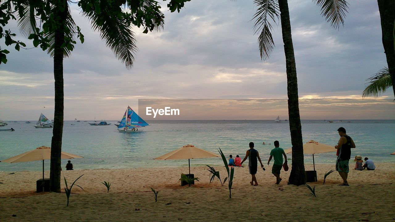 beach, sea, tree, sand, water, palm tree, sky, shore, nature, real people, lifestyles, scenics, horizon over water, cloud - sky, leisure activity, beauty in nature, vacations, outdoors, enjoyment, net - sports equipment, beach volleyball, tree trunk, day, men, sunset, sport, rope swing, people
