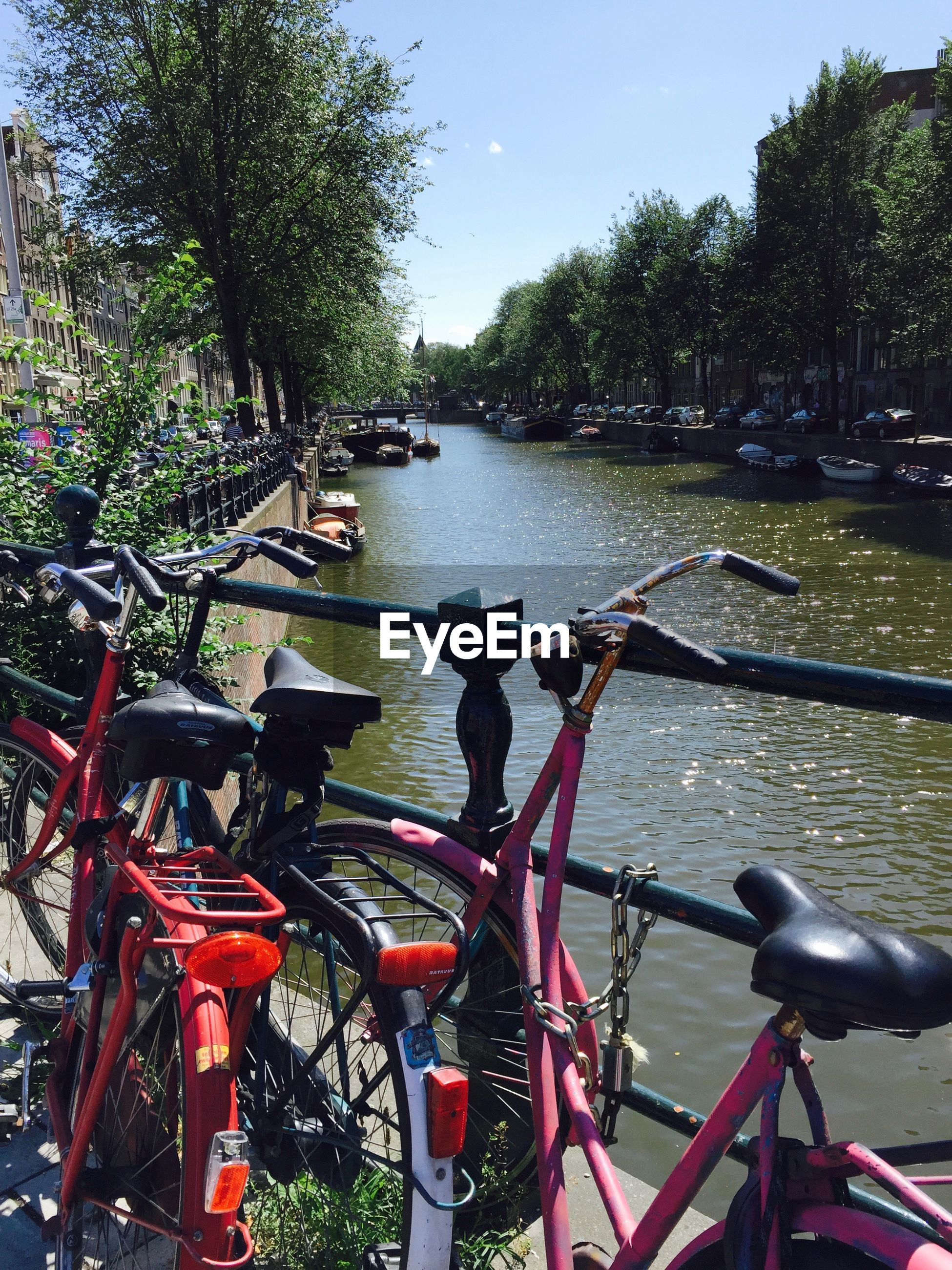 Bicycles parked at railing by canal against trees