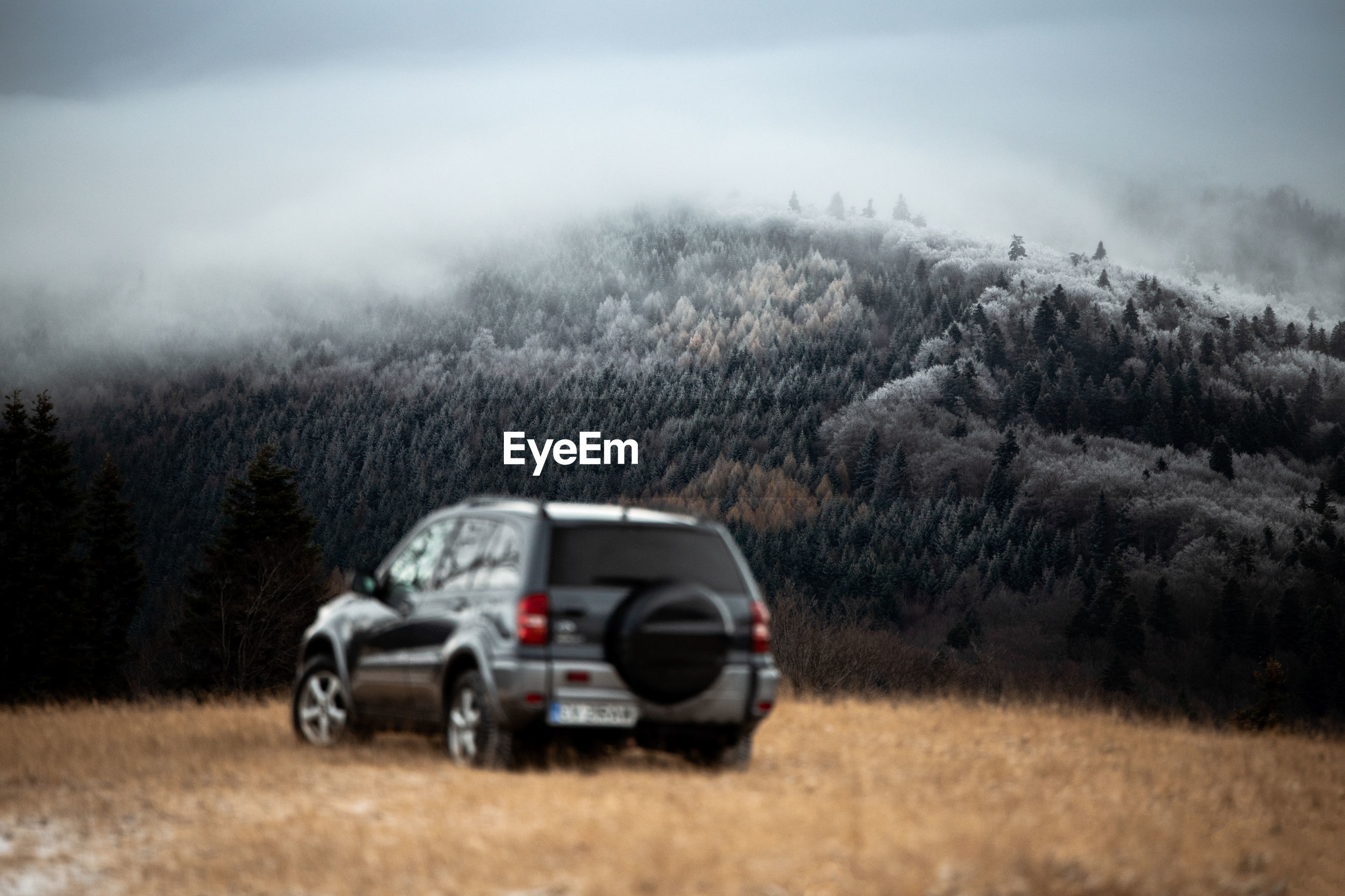 Car on land by mountain