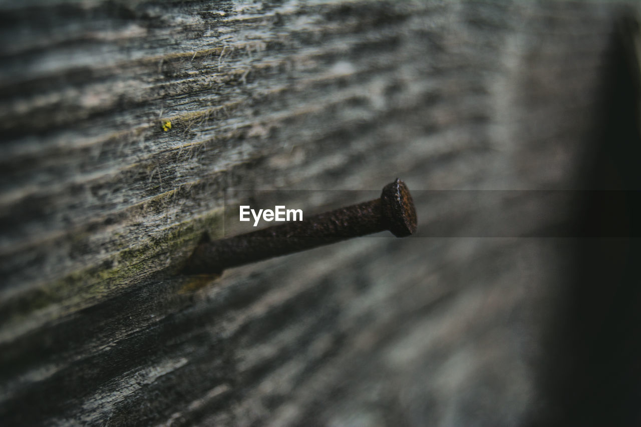 Close-Up Of A Nail On Wooden Wall
