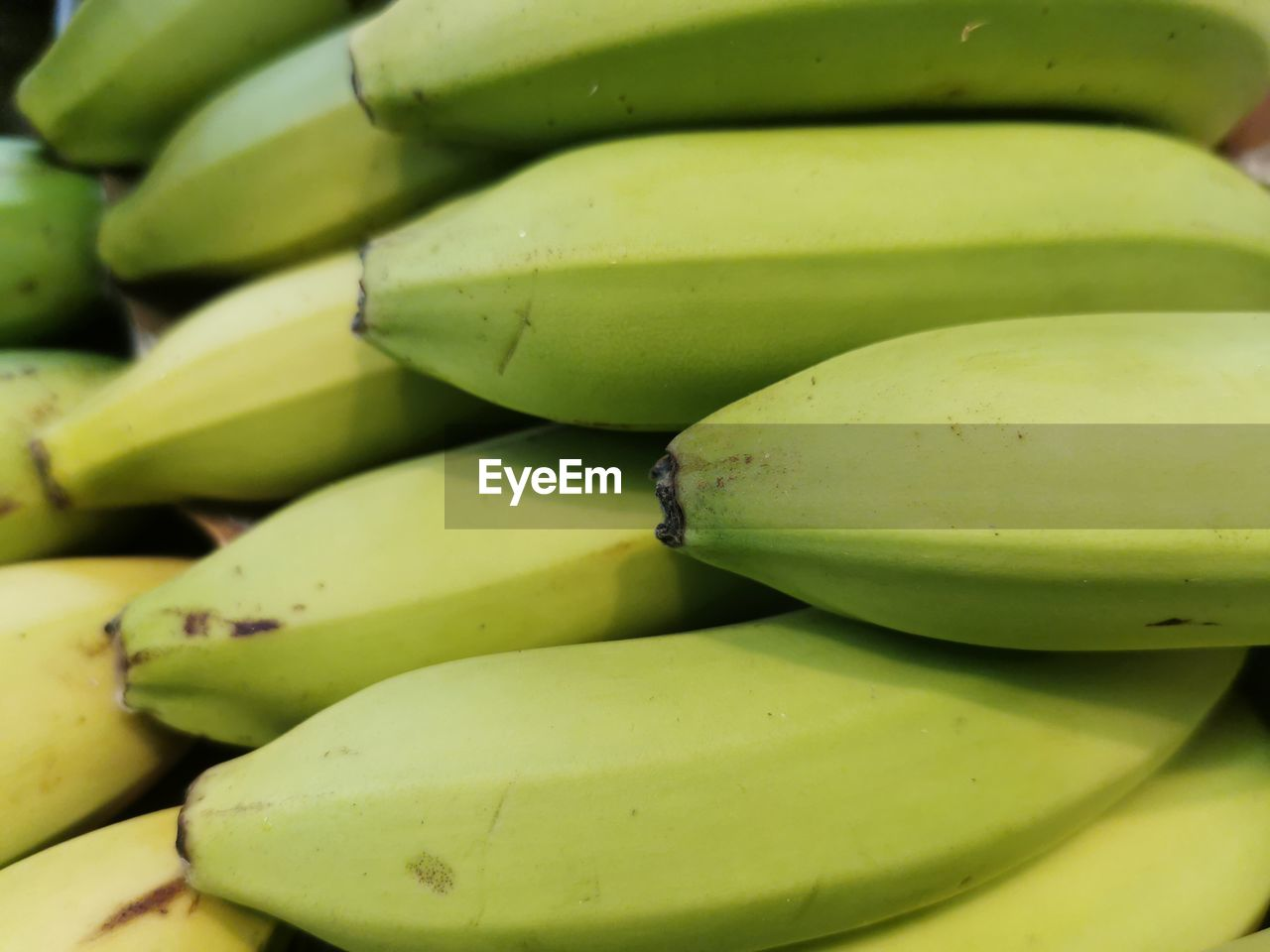 healthy eating, green color, food and drink, wellbeing, fruit, food, banana, freshness, full frame, close-up, no people, backgrounds, still life, yellow, abundance, large group of objects, day, for sale, group of objects, ripe