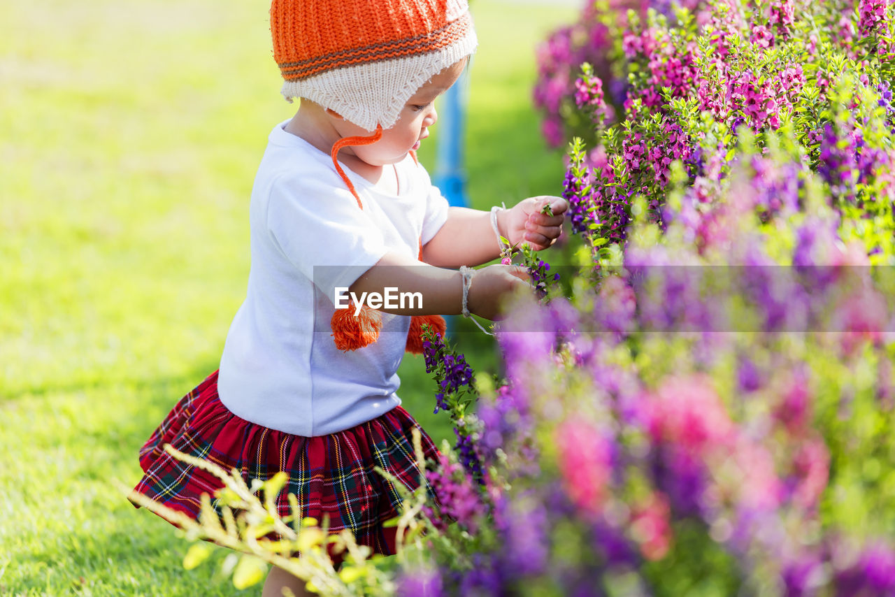 The image of a cute little girl happily picking flowers in the garden.