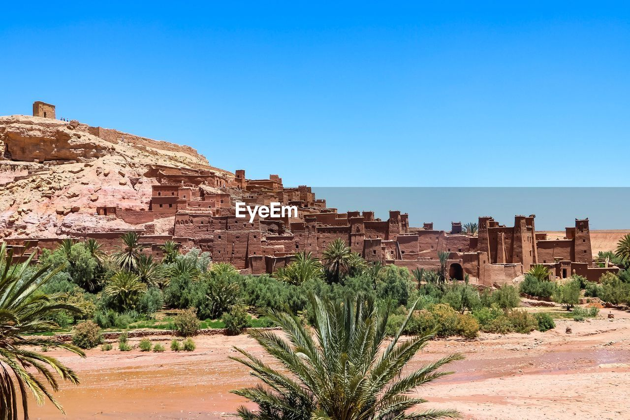 sky, history, the past, clear sky, architecture, plant, ancient, built structure, nature, copy space, travel destinations, blue, tree, travel, day, building exterior, no people, tourism, ancient civilization, sunlight, outdoors, archaeology, climate, arid climate