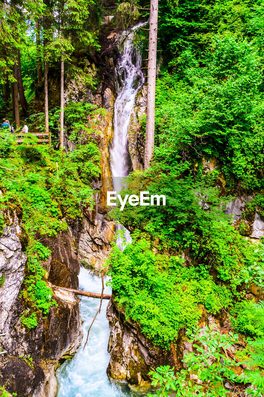 water, plant, tree, forest, waterfall, green color, scenics - nature, beauty in nature, nature, flowing water, growth, land, motion, rock, long exposure, no people, foliage, day, lush foliage, flowing, rainforest, outdoors, power in nature, falling water, stream - flowing water