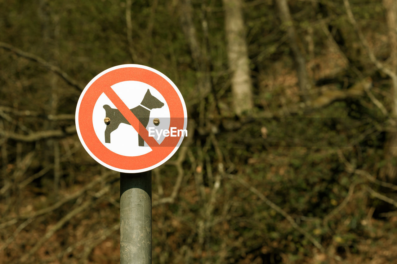 sign, communication, no people, day, guidance, human representation, plant, representation, nature, focus on foreground, warning sign, shape, close-up, circle, tree, geometric shape, road, symbol, road sign, outdoors