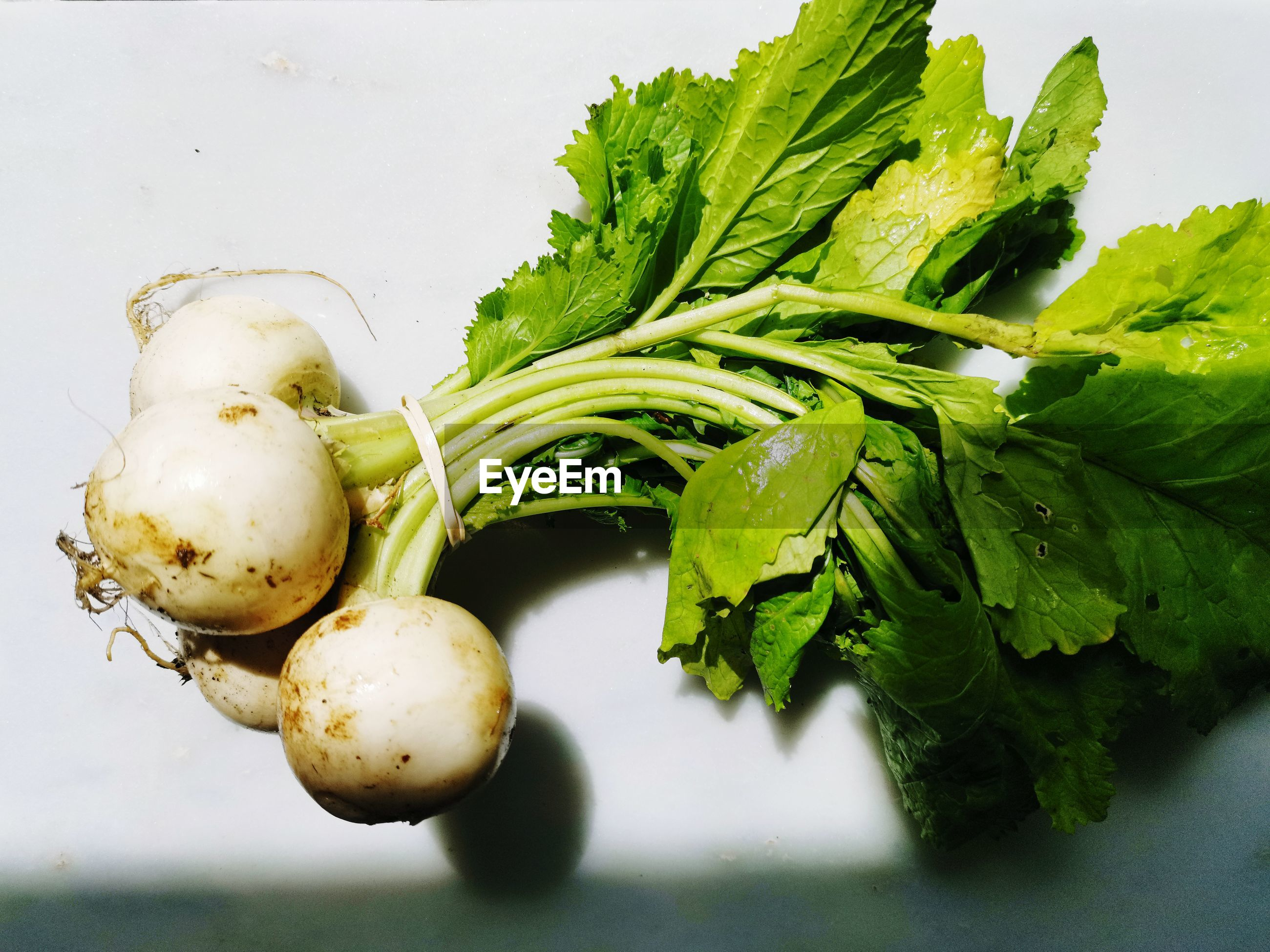 CLOSE-UP OF FRESH GREEN VEGETABLES ON WHITE BACKGROUND
