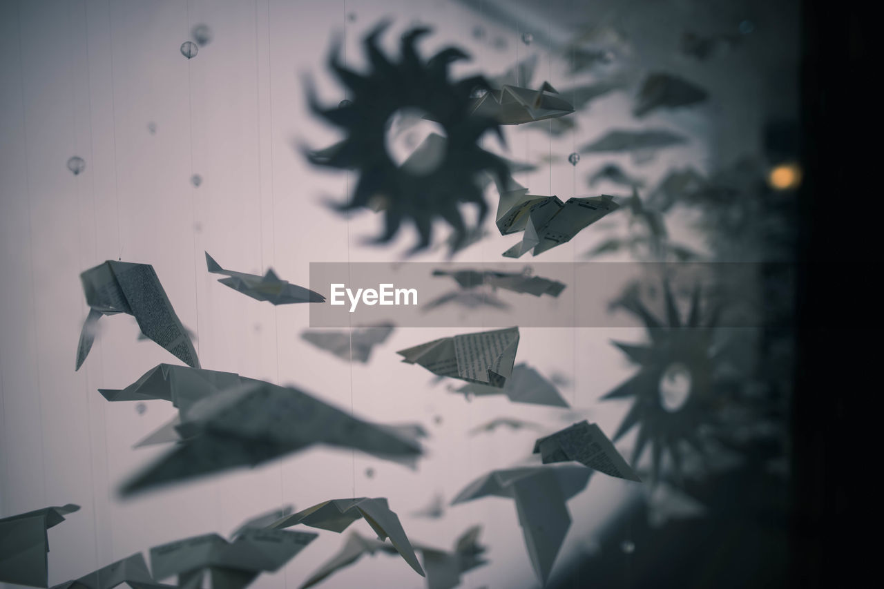 View of origami birds