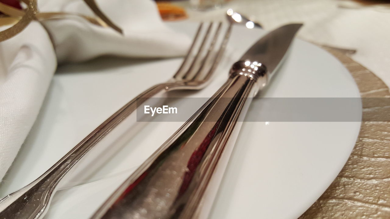 Fork And Table Knife In Plate