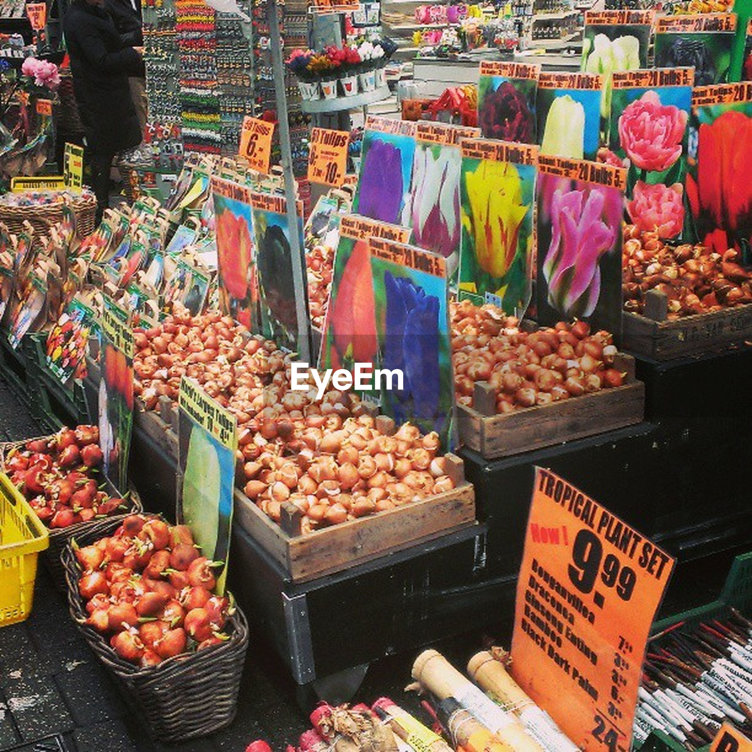 for sale, food and drink, food, retail, market, market stall, freshness, healthy eating, abundance, large group of objects, choice, variation, display, vegetable, sale, price tag, small business, consumerism, selling, street market