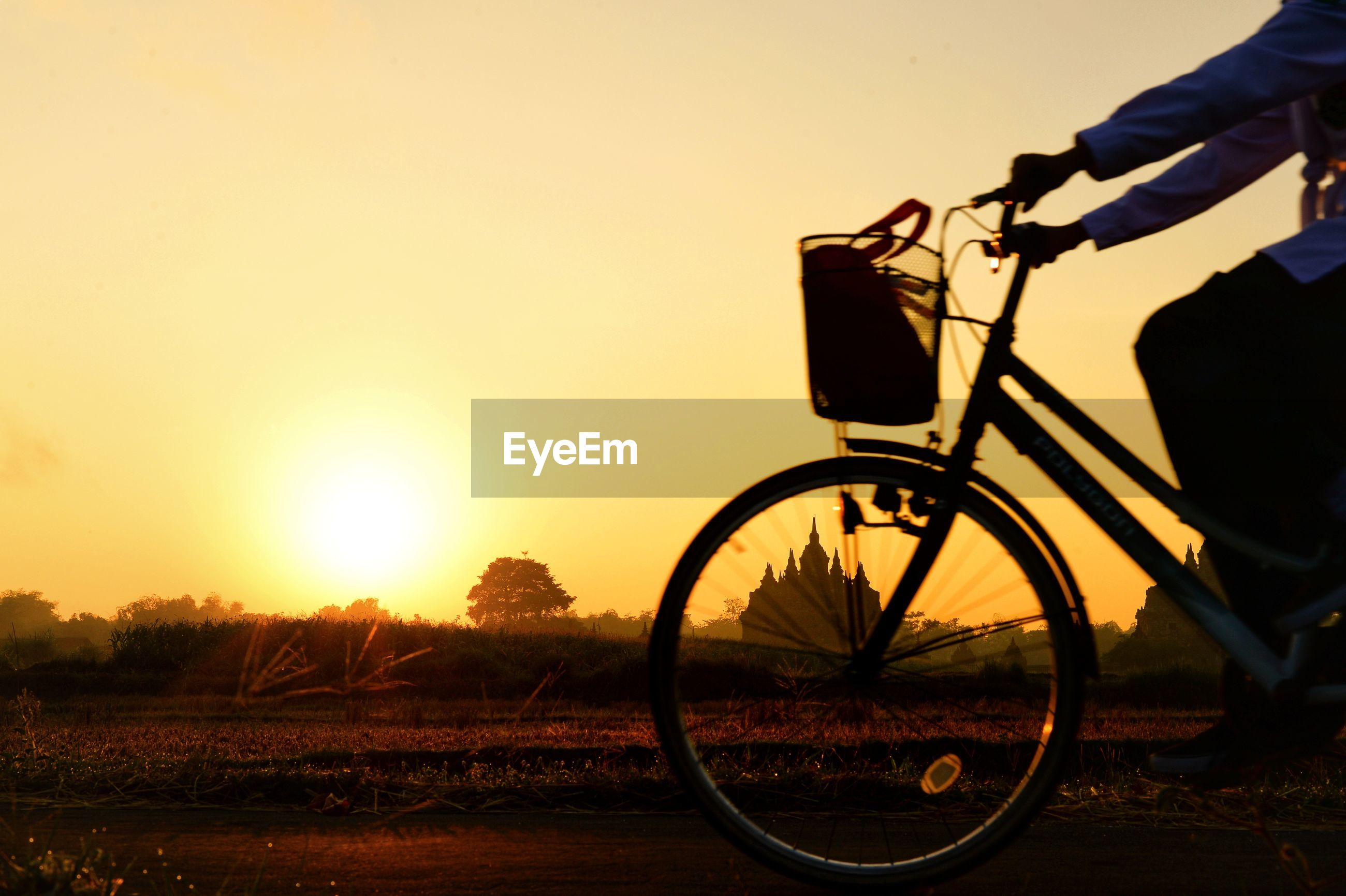 Silhouette woman riding bicycle on street during sunset