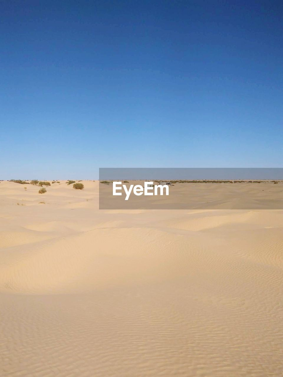 sand, land, scenics - nature, sky, desert, landscape, tranquility, tranquil scene, copy space, environment, clear sky, blue, climate, beauty in nature, arid climate, nature, sand dune, day, non-urban scene, no people, outdoors, atmospheric