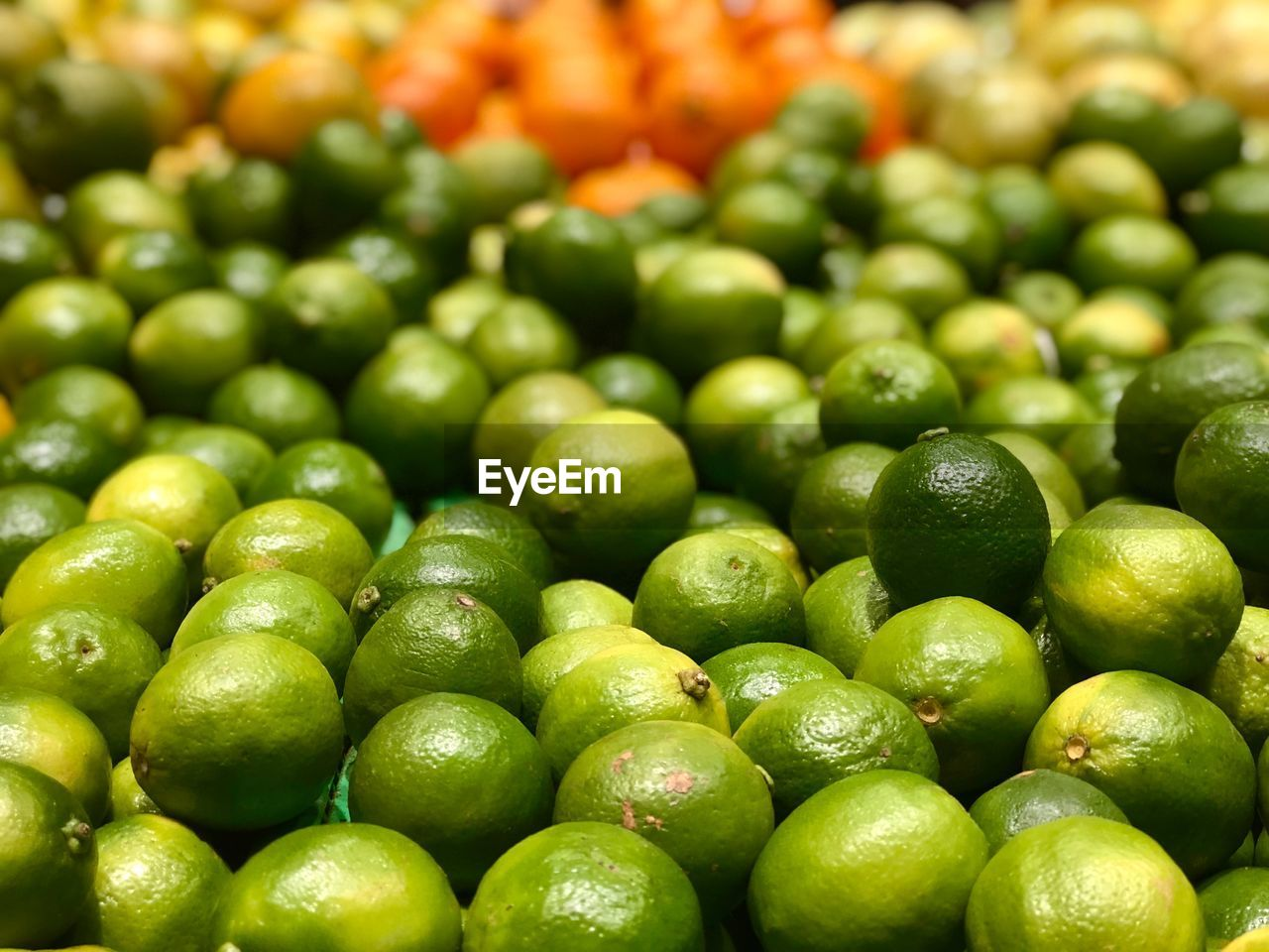 green color, freshness, food, food and drink, large group of objects, full frame, healthy eating, wellbeing, close-up, abundance, backgrounds, no people, vegetable, still life, selective focus, indoors, retail, fruit, high angle view, raw food