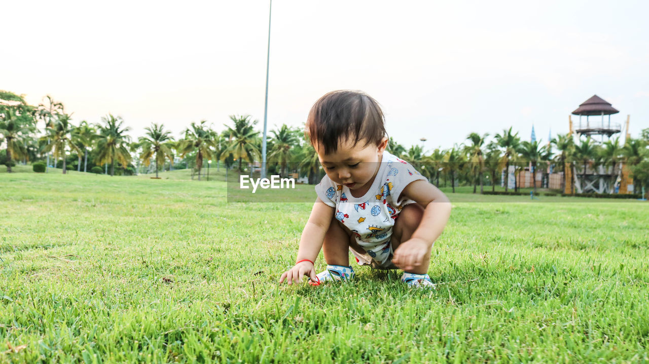 childhood, child, grass, plant, real people, land, casual clothing, boys, one person, nature, girls, field, leisure activity, front view, green color, day, lifestyles, innocence, outdoors