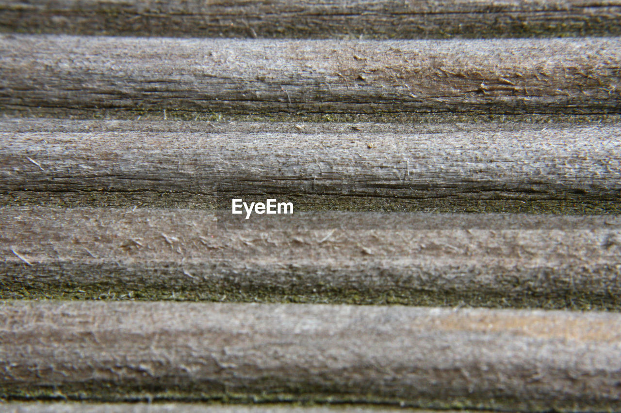 backgrounds, textured, in a row, pattern, nature, no people, full frame, abstract, close-up, outdoors, grass, day