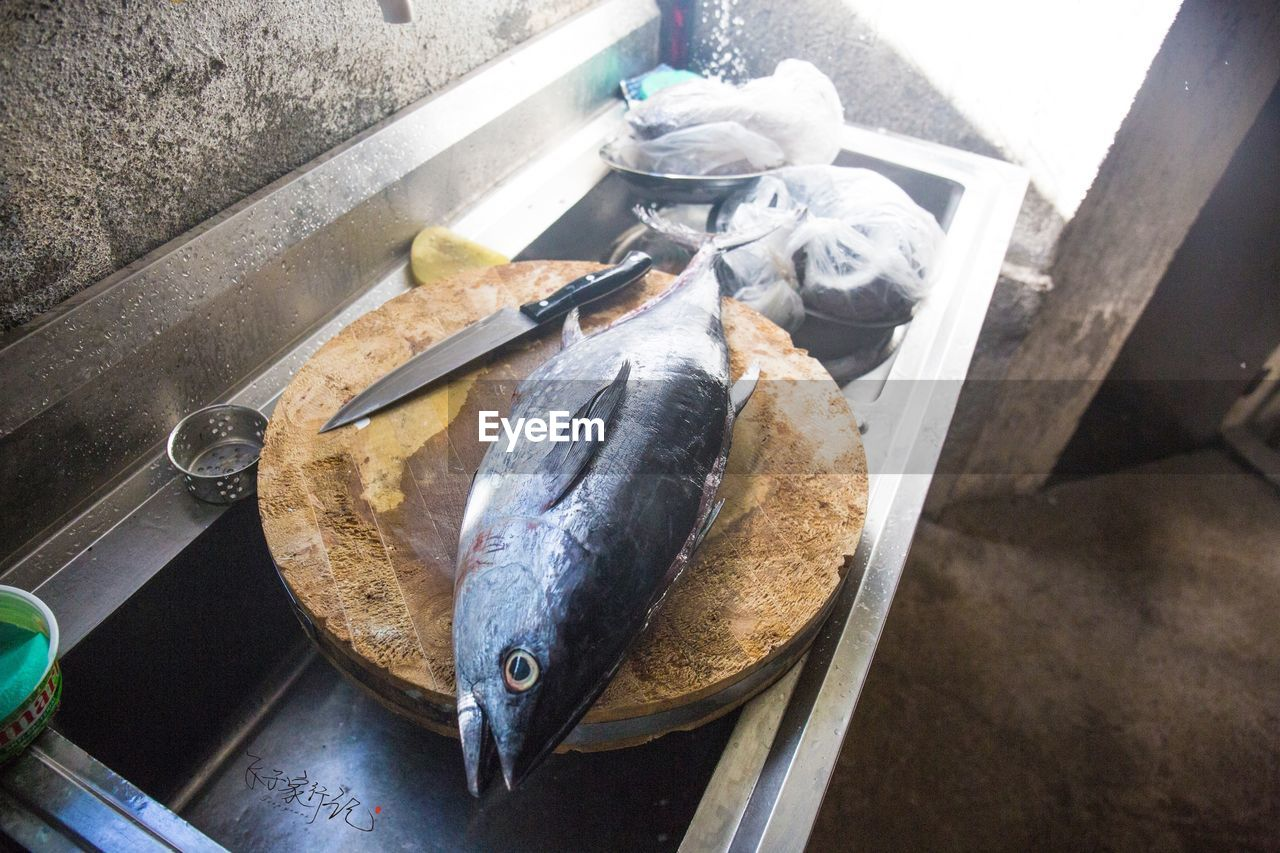 HIGH ANGLE VIEW OF FISH ON TRAY