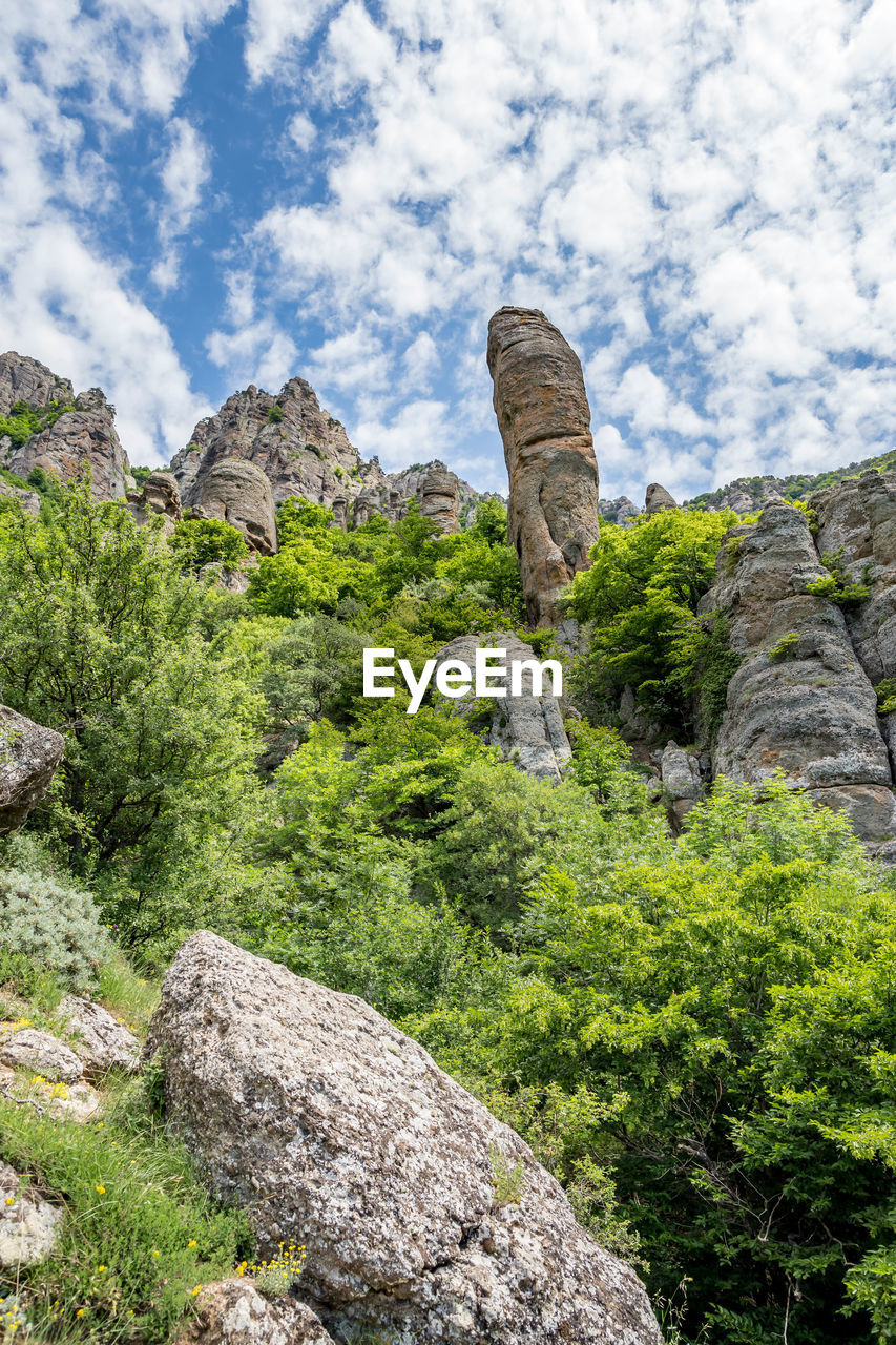 rock, solid, rock - object, rock formation, plant, nature, sky, no people, tranquil scene, tranquility, beauty in nature, day, cloud - sky, scenics - nature, tree, non-urban scene, land, geology, landscape, low angle view, outdoors, eroded, ancient civilization, formation