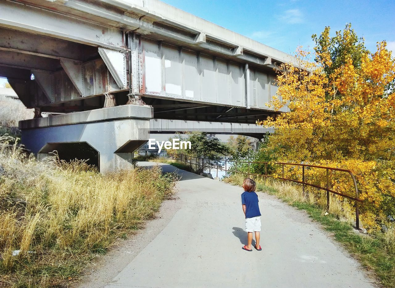 Rear View Full Length Of Boy On Road Looking At Bridge During Autumn