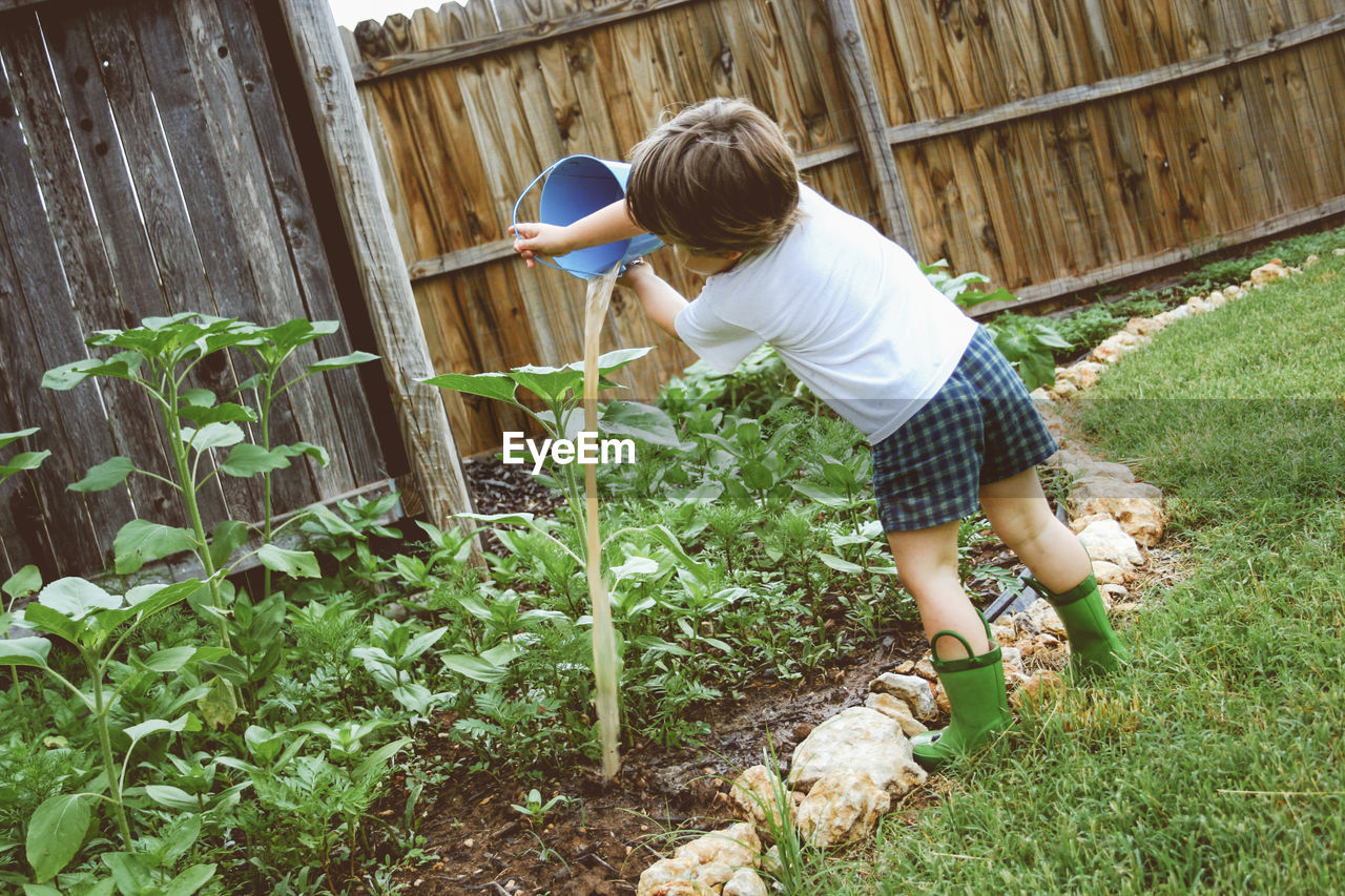 Rear View Of Boy Watering Plants At Yard