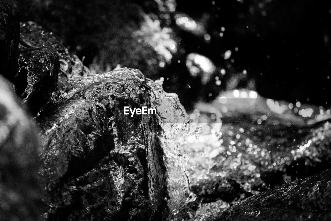close-up, focus on foreground, no people, nature, rock, water, day, rock - object, solid, selective focus, tree, textured, rough, outdoors, plant, land, moss, growth, motion, flowing water, flowing