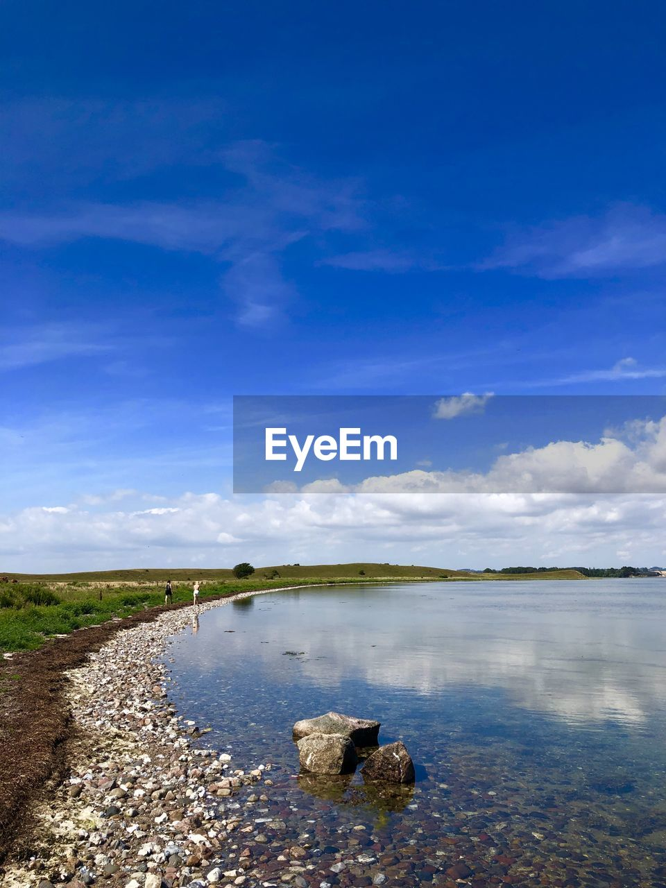 sky, water, cloud - sky, scenics - nature, tranquility, tranquil scene, nature, blue, lake, day, beauty in nature, no people, non-urban scene, animal, solid, animal themes, one animal, outdoors, land