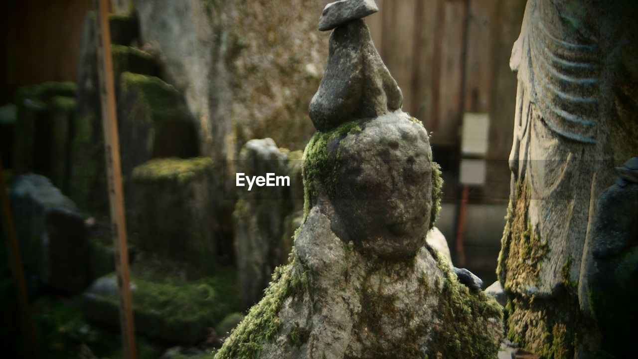 Close-Up Of Sculpture Covered With Moss