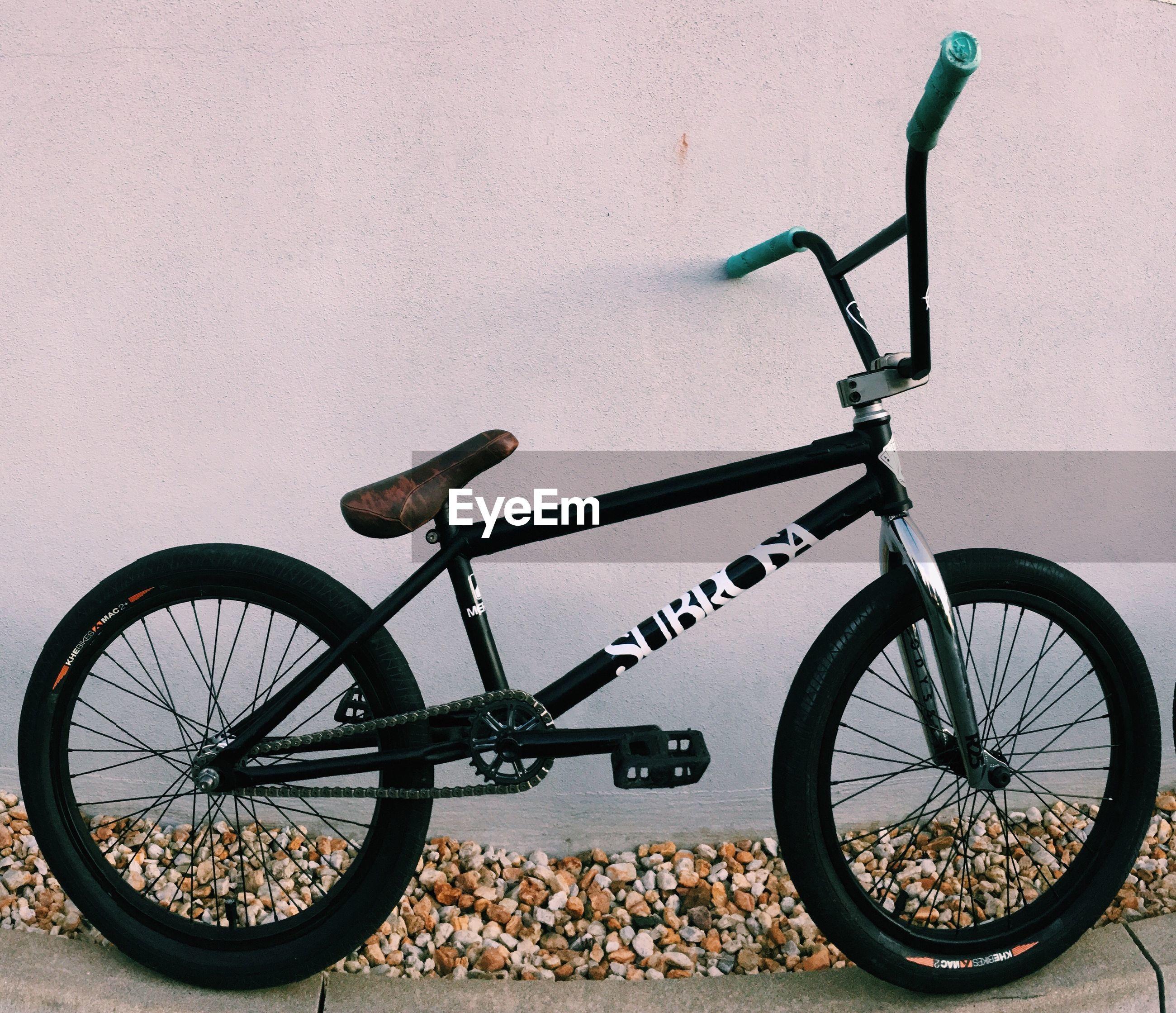 BICYCLE WHEEL AGAINST TREE