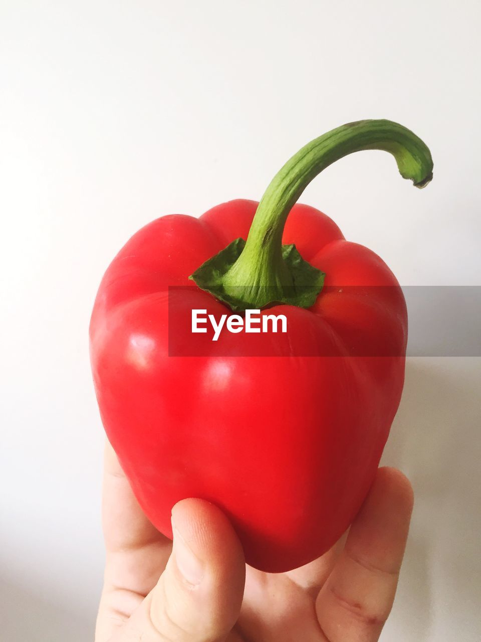 Cropped Image Of Hand Holding Red Bell Pepper Against White Background