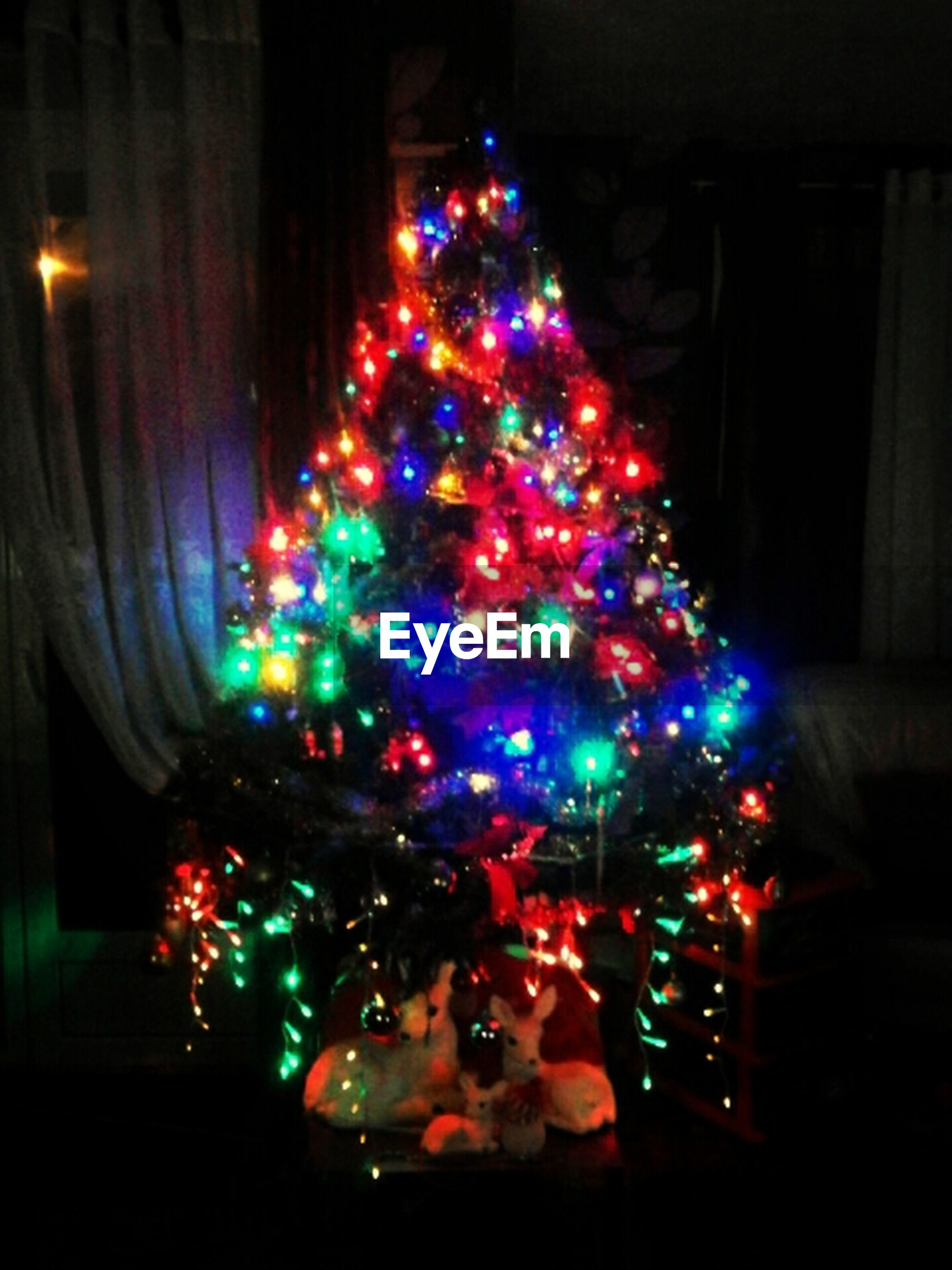 illuminated, night, celebration, lighting equipment, decoration, christmas decoration, multi colored, christmas lights, christmas, christmas tree, indoors, glowing, light - natural phenomenon, built structure, architecture, tradition, low angle view, light, building exterior, electric light